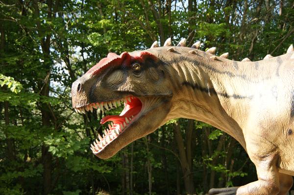 Kopf eines Giganotosaurus im Dino-Park