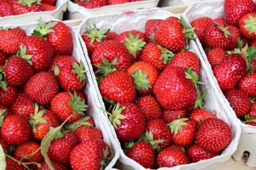 Erdbeerschalen