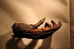 Hand vor Moora, dem Mädchen aus dem Moor