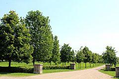 Der Baumpark Thedinghausen besteht aus 450 Baumarten und -sorten